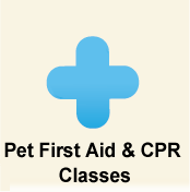 Pet First Aid & CPR Classes